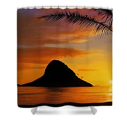 Chinaman's Hat Island Shower Curtain by Dale Jackson