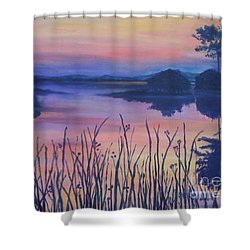 Shower Curtain featuring the painting Chincoteaque Island Sunset by Julie Brugh Riffey