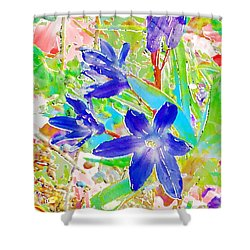 Chionodoxa Shower Curtain