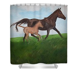 Shower Curtain featuring the painting Chloe's Dream by George Pedro