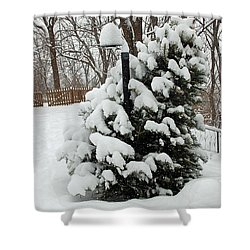 Christmas Tree Shower Curtain by Aimee L Maher Photography and Art Visit ALMGallerydotcom