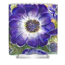Shower Curtain featuring the painting Cineraria Of South Africa  by Bernadette Krupa
