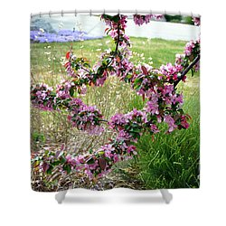 Circle Of Blossoms Shower Curtain
