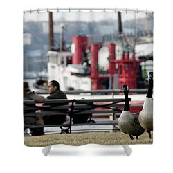 City Geese Shower Curtain