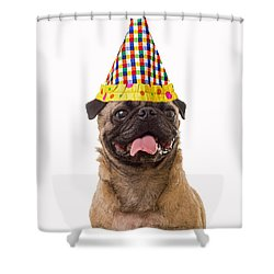 Class Clown Shower Curtain by Edward Fielding