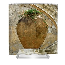 Clay Pot Shower Curtain by Lainie Wrightson