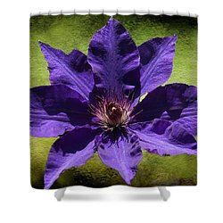 Clematis On Stone Shower Curtain by Rick Friedle