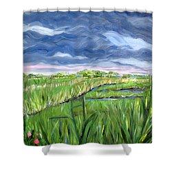 Cloudy Marsh Shower Curtain by Clara Sue Beym