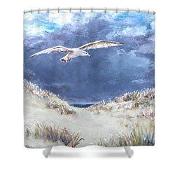 Cloudy With A Chance Of Seagulls Shower Curtain by Jack Skinner