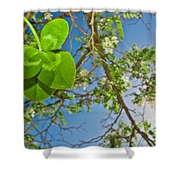 Clover And Sunflare 1 Shower Curtain by Amber Flowers