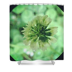 Clover Flower Shower Curtain