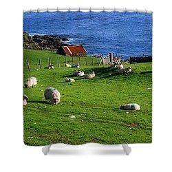 Co Cork, Beara Peninsula Shower Curtain by The Irish Image Collection