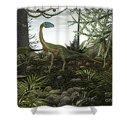 Coelophysis Dinosaurs Walk Amongst Shower Curtain by Walter Myers
