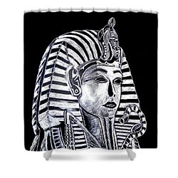 Coffin Of The King Shower Curtain by Lisa Brandel