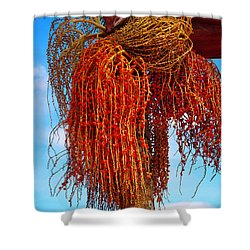 Coiffure Shower Curtain by Skip Hunt