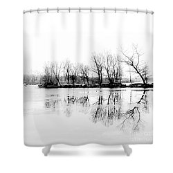Cold Silence Shower Curtain by Hannes Cmarits