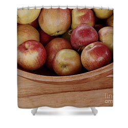 Colonial Apples Shower Curtain