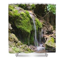 Shower Curtain featuring the photograph Colorado 2 by Deniece Platt