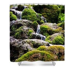 Shower Curtain featuring the photograph Colorado 5 by Deniece Platt
