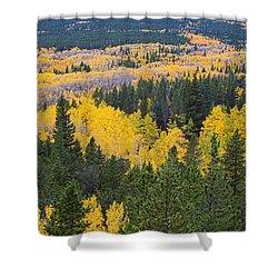 Colorado Autumn Aspens Boulder County  Shower Curtain by James BO  Insogna