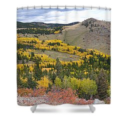 Colorado Autumn Aspens Colors Shower Curtain by James BO  Insogna