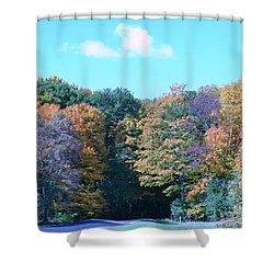 Colored Trees Shower Curtain by Dyana Rzentkowski