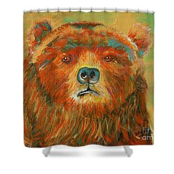 Colorful Bear Shower Curtain