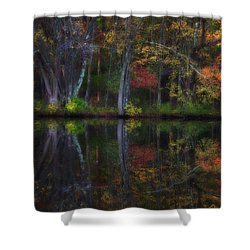Colorful Forest Shower Curtain by Karol Livote