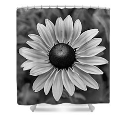 Colorless Shower Curtain by Brian Hughes