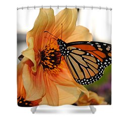 Shower Curtain featuring the photograph Colors In Sync by Michael Frank Jr