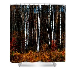 Colors Of Fall Shower Curtain by Jenny Rainbow