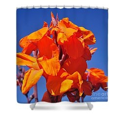 Colors Of Summer Shower Curtain by Kaye Menner