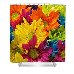 Colossal Colors Shower Curtain