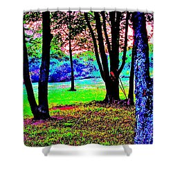 Shower Curtain featuring the photograph Colour Whore by Xn Tyler