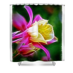 Shower Curtain featuring the photograph Columbine by Judi Bagwell