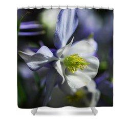 Columbine  Shower Curtain by Saija  Lehtonen