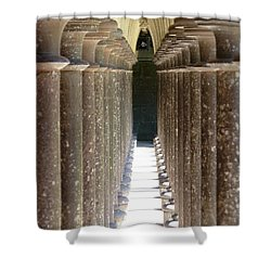 Columns Shower Curtain by Christine Huwer