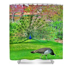 Shower Curtain featuring the photograph Come Here Often by John King