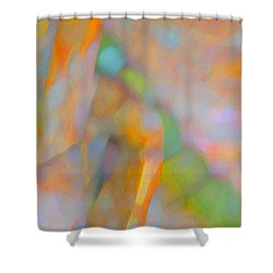 Shower Curtain featuring the digital art Comfort by Richard Laeton