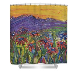 Comfortable Silence Shower Curtain