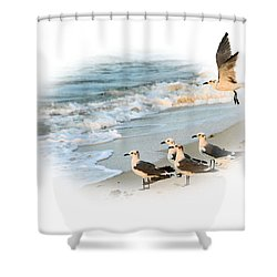 Coming In For A Landing Shower Curtain by Kristin Elmquist