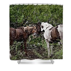 Companionship Shower Curtain by Dinah Anaya