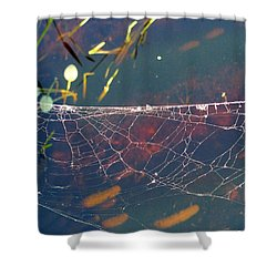 Shower Curtain featuring the photograph Complexity Of The Web by Nina Prommer