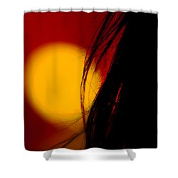 Concert Silhouette Shower Curtain