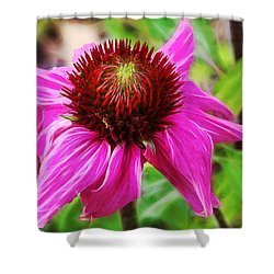 Shower Curtain featuring the photograph Coneflower by Judi Bagwell