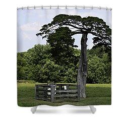 Confederate Grave Of Lafayette Meeks Appomattox Virginia Shower Curtain by Teresa Mucha