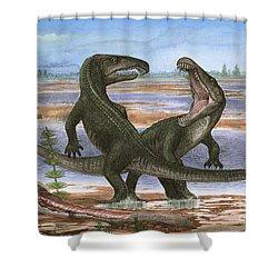 Confrontation Between Two Prehistoric Shower Curtain by Sergey Krasovskiy
