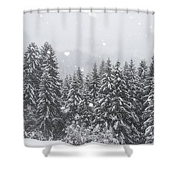 Coniferous Forest In Winter, Alps Shower Curtain by Konrad Wothe