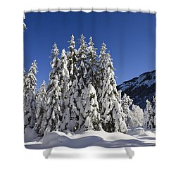Coniferous Forest In Winter Shower Curtain by Konrad Wothe