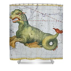 Constellation Of Cetus The Whale Shower Curtain by James Thornhill